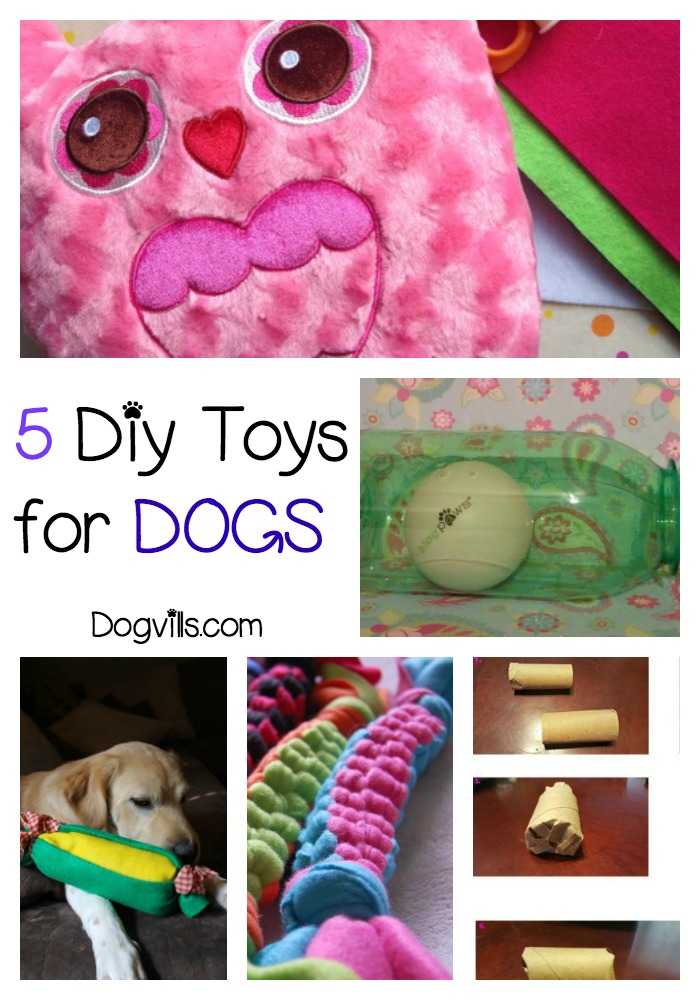 5 Great DIY Toys to Make For Your Canine BFF