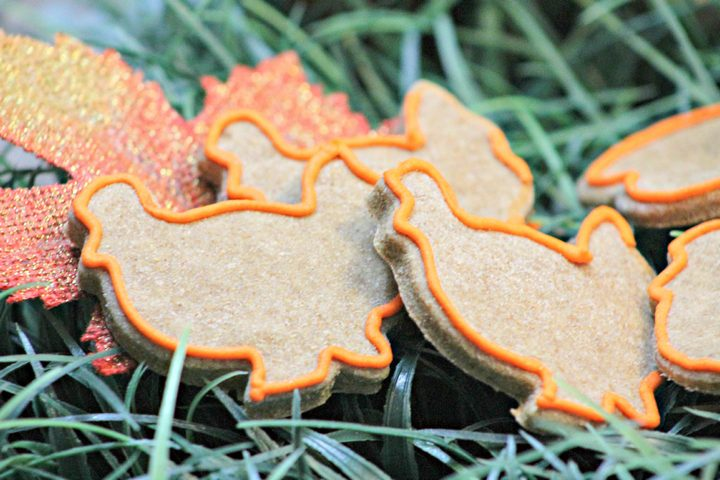 Let your dog celebrate with the family in a safe way with this delicious and cute Thanksgiving hypoallergenic dog treat recipe!
