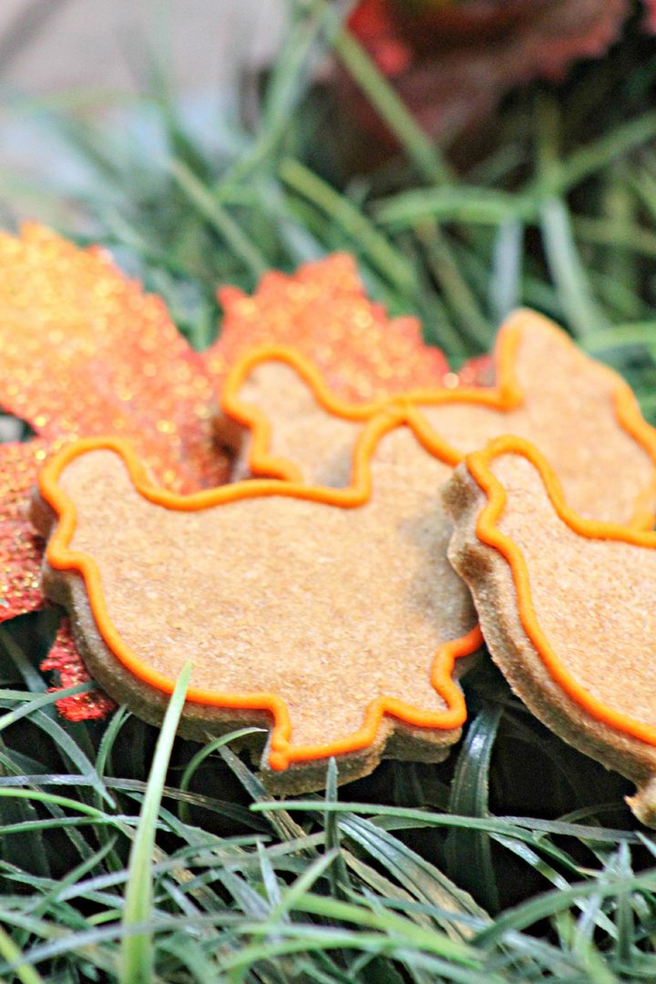 Turkey-Shaped Hypoallergenic Dog Treat Recipe for Thanksgiving
