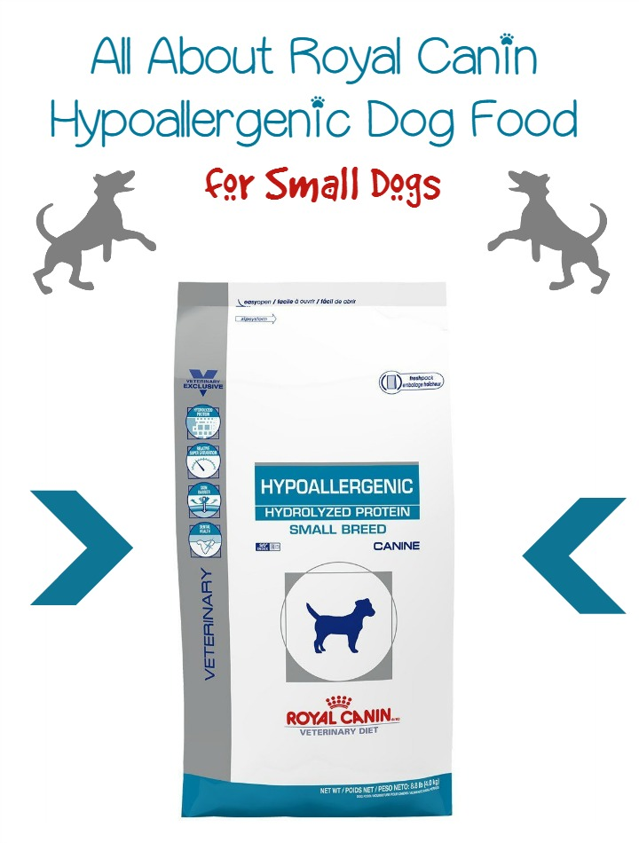 Royal Canin Hypoallergenic Dog Food – Small Breed
