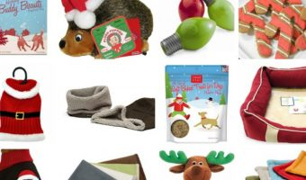 When you're making your list and checking it twice, don't forget to get a little something for Fido & Spot! Check out our favorite Christmas gifts for dogs!