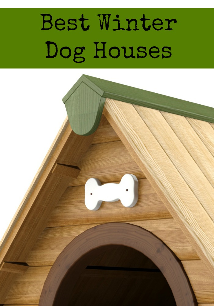 Best winter dog houses dogvills for Best insulated dog house for cold weather