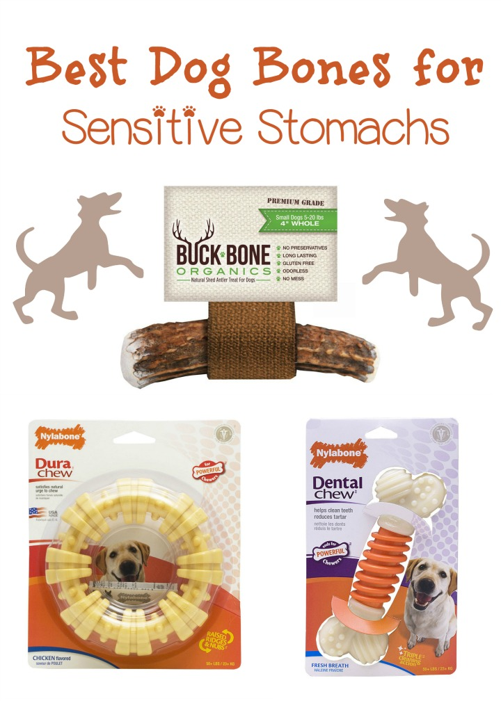 Best Dog Bones For Pooches With Sensitive Tummies Dogvills