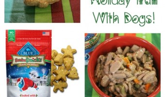 Looking for fun ways to include your dog in the holidays? Check out our tips, including incorporating yummy BLUE Santa Snacks into their stocking & more!