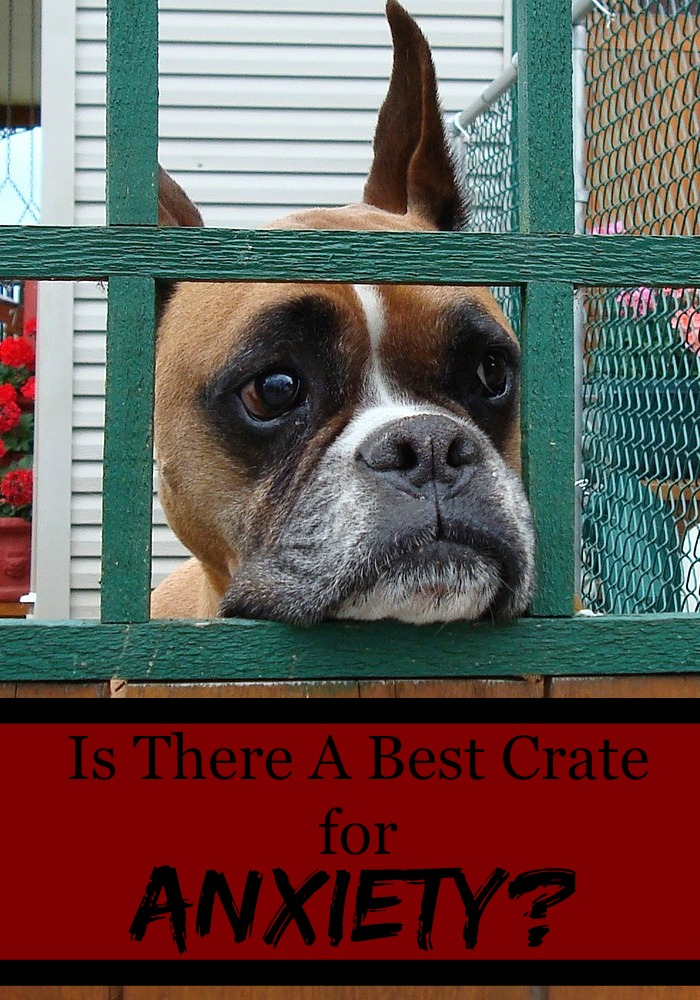 Is There A Best Crate for Anxiety?