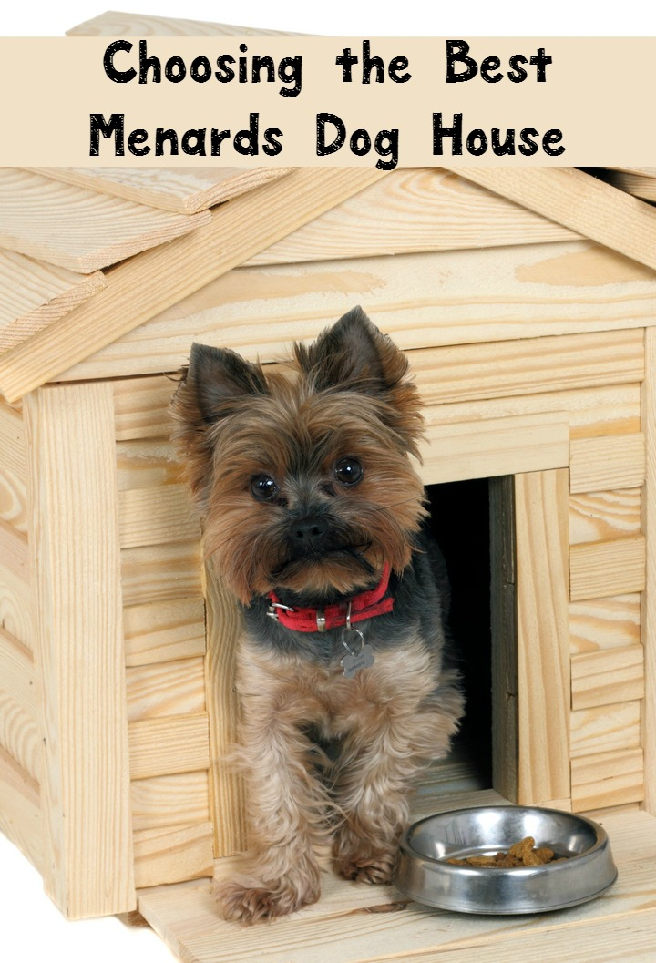 Tips for Choosing the Best Menards Dog House