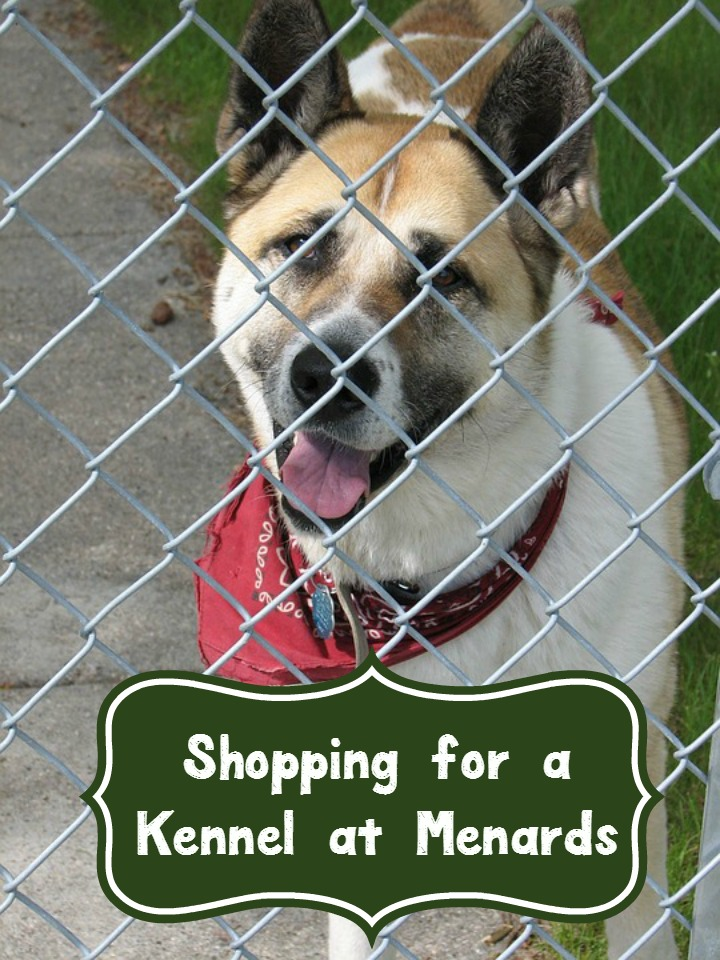 Menards Dog Kennel Shopping Guide