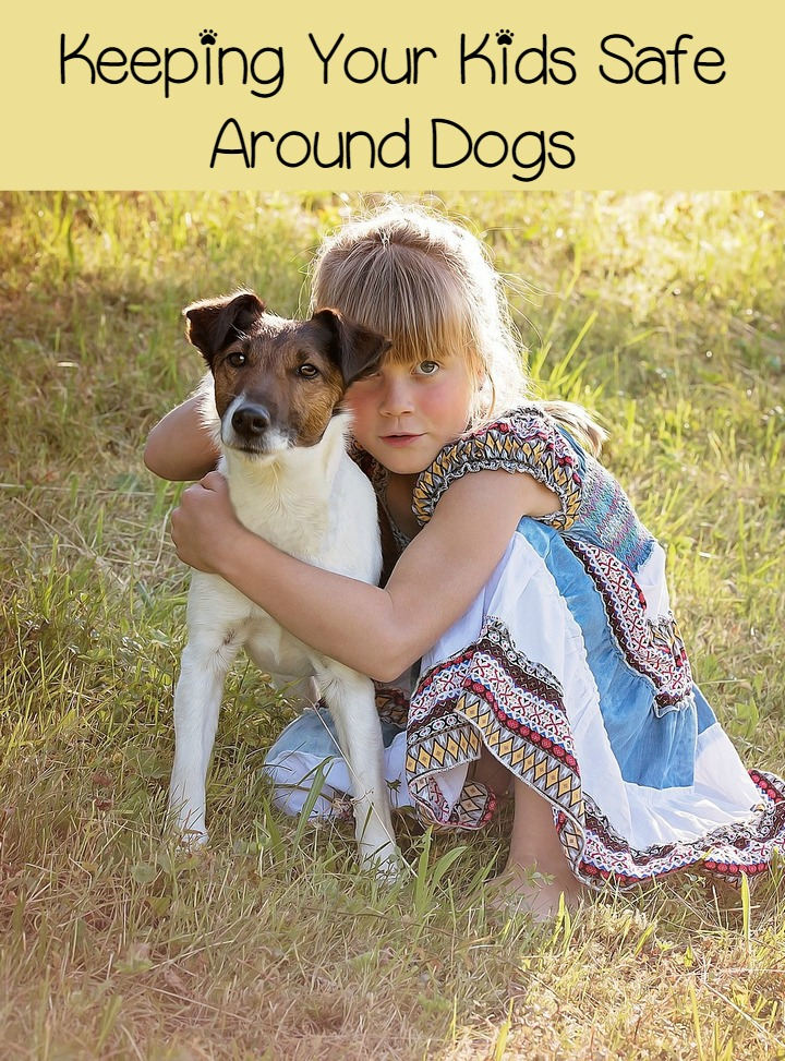 Child Safety Rules Everyone Needs to Know Before Adopting a Dog