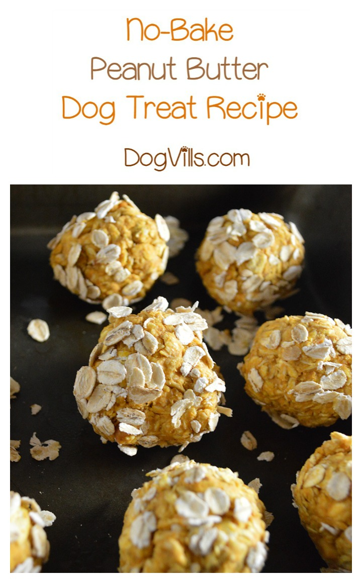 No Bake Peanut Butter Dog Treat Recipe