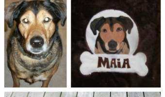 Looking for fun and unique customized dog gear? Check out PrideBites and give your dog a personalized work of art!