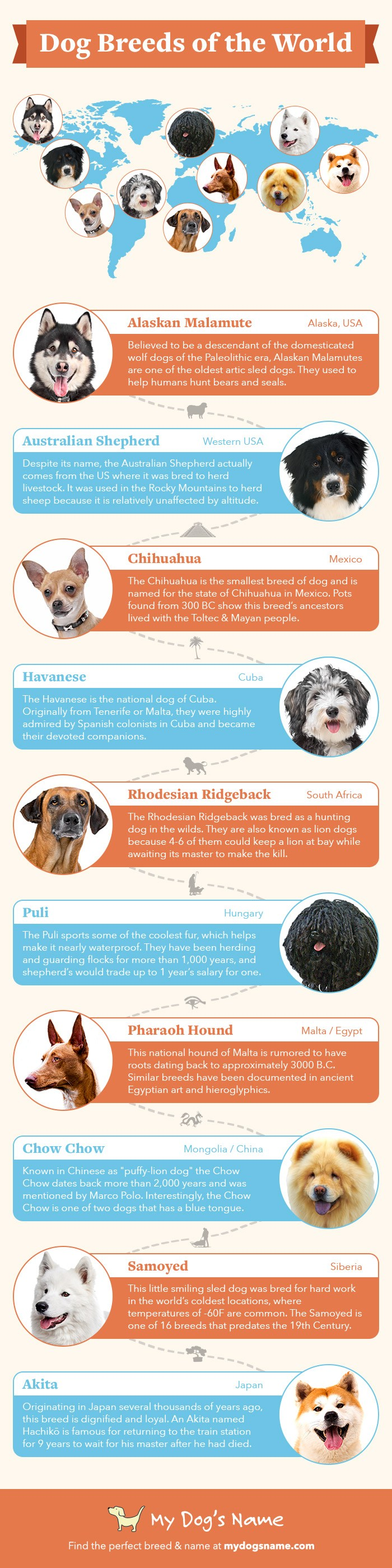 When you look at dogs from around the world, from the petite Pomeranian to the giant Great Dane, it's hard to believe they're the same species. Dogs vary so much in their appearance and personality. Check out these crazy facts about dog breeds from around the world!