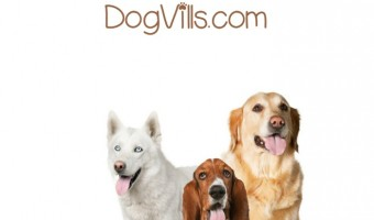 Looking for famous quotes about dogs? We've got you covered! Few animals inspire as much passion and loyalty as our canine companions. While words can't really describe how much we love our pooches, these quotes do a pretty good job of expressing the place they hold in our hearts. Check out some of the most famous quotes about dogs.