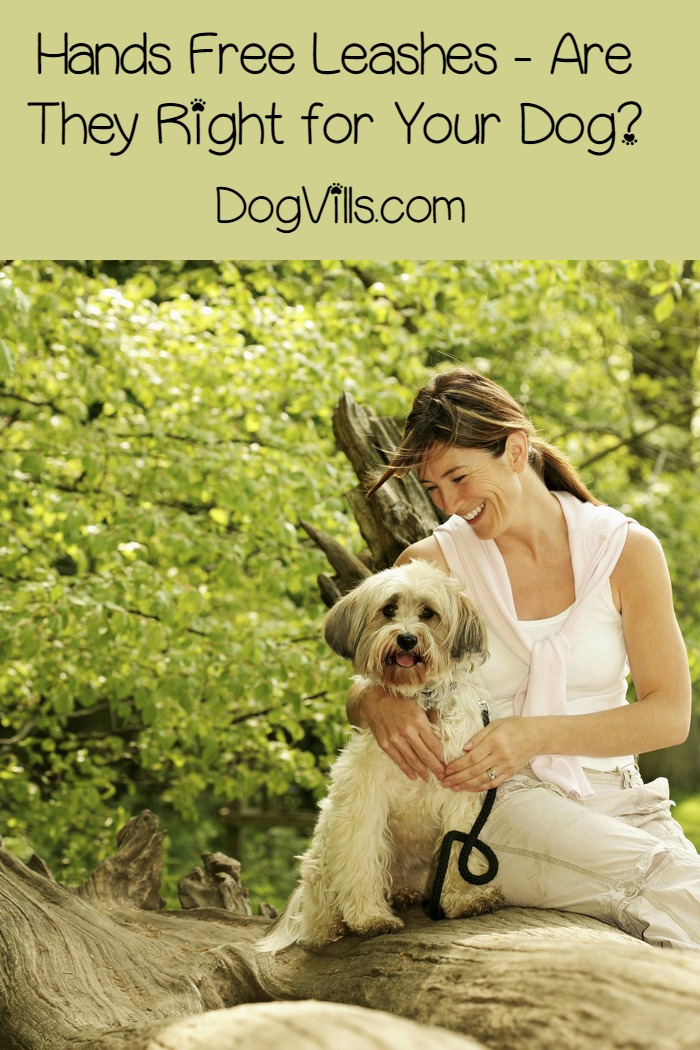 Hands-Free Leashes – Are They Right for Your Dog?