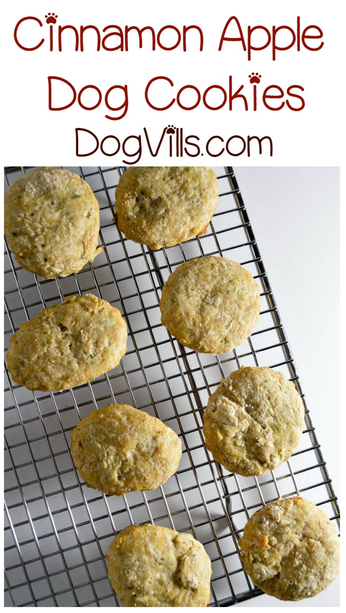 Homemade Allergy-Friendly Cinnamon Apple Cookies for Your Dog