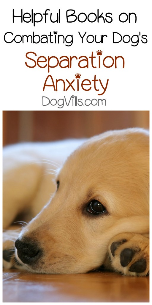Looking for great books on helping your dog cope with separation anxiety? Check out a few of our favorites!