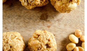 Honey Oat Peanut Butter Dog Treat Recipe, No Oven Required!