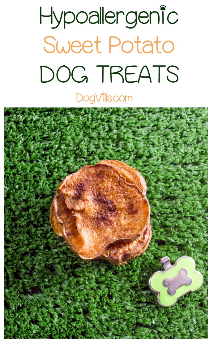 "3-Ingredient Hypoallergenic Sweet Potato ""Jerky"" Dog Chew Treats"