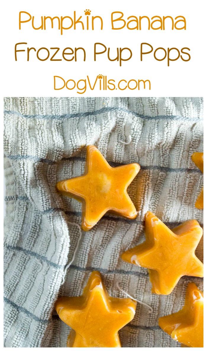 Homemade Frozen Pumpkin Banana Pup Pops Hypoallergenic Dog Treat Recipe