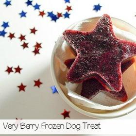 strawberry-blueberry-frozen-dog-treat-sa
