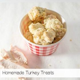turkey-treats-homemade-dog-treats-for-dogs-1-of-1-6_zpsvxdughvh