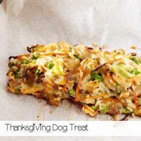 thanksgiving-dog-treat-recipe
