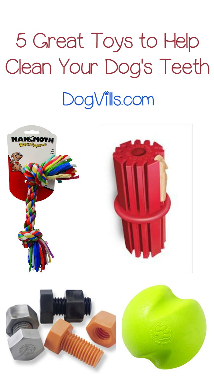 5 Great Toys That Really Help Clean Your Dog's Teeth