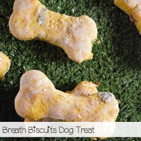 breathbiscuits-sa