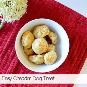 cheddar-dog-treat-recipe-sa