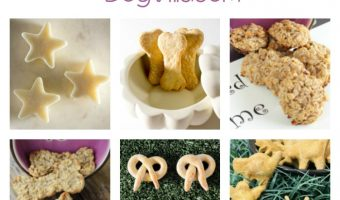 All of Our Dog Treats Recipe Videos & Tutorials
