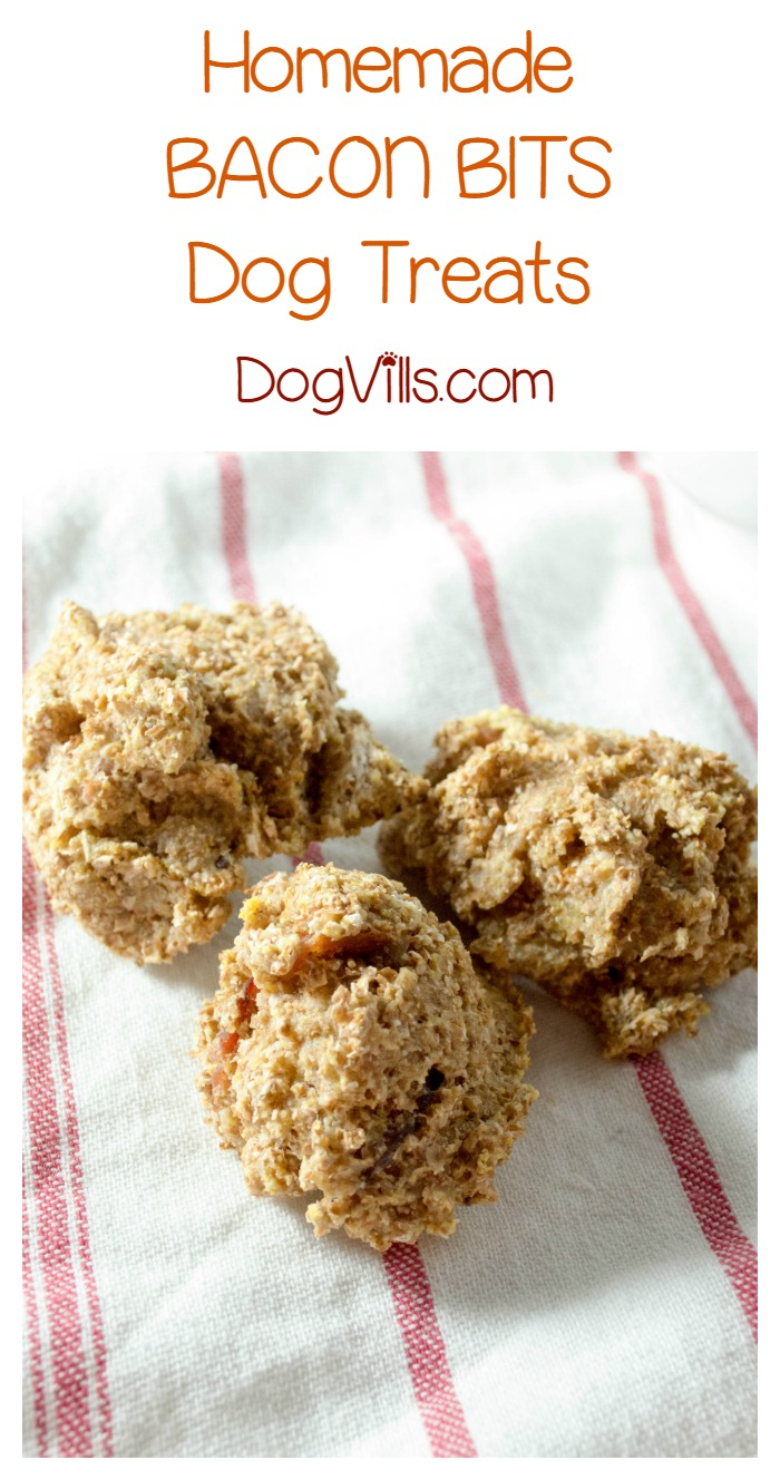Easy Bacon Bits Homemade Dog Treat Recipe