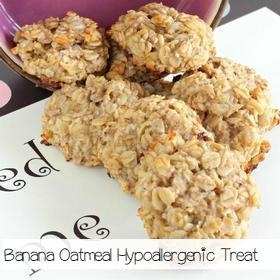 hypoallargenic-dog-treat-recipe-banana-oatmeal-treat-sa