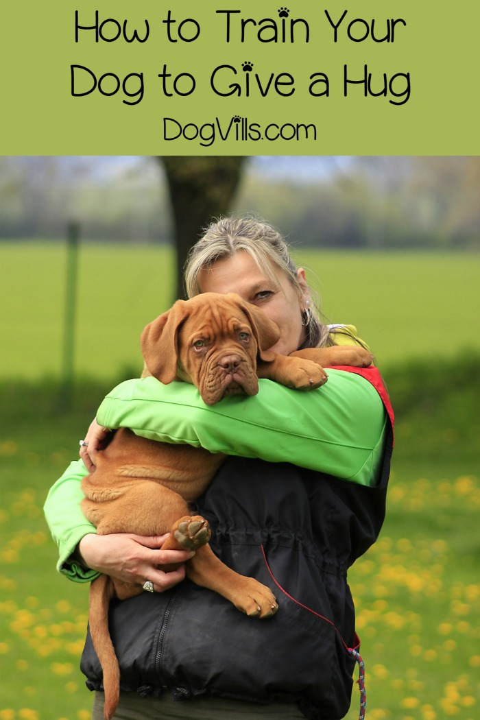 Giving Hugs – Training Your Dog to do the Cutest Trick