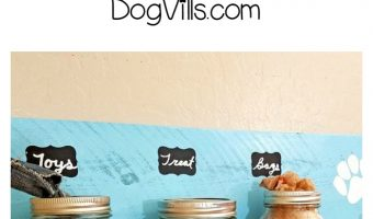 Keep all of your pup's essentials organized in style with this easy DIY mason jar dog treat organizer! Check out the video tutorial too!