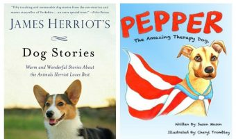 Looking for a truly inspiring tale to snuggle up with? Check out four of our favorite books to read with stories of extraordinary dogs!