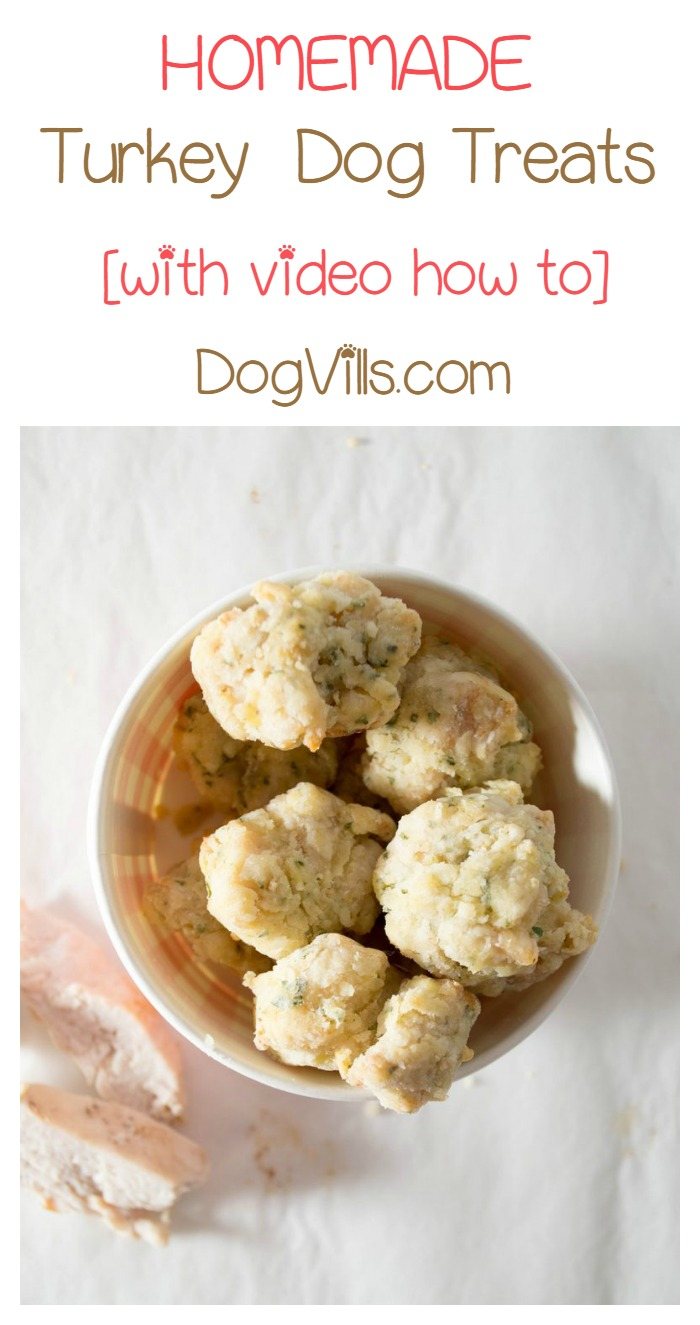 Surprise Fido on Thanksgiving with a Homemade Turkey Treat for Dogs!