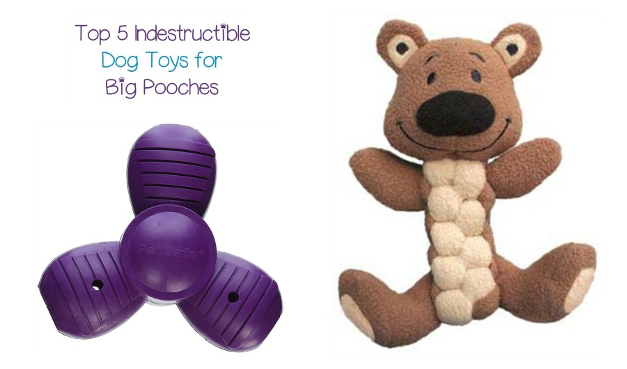 Best Indestructible Toys For Dogs