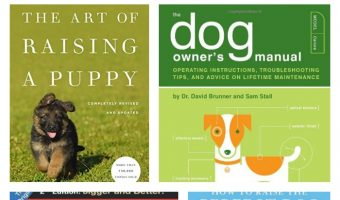 Looking for the best books for first time dog owners? We've got you covered! Check out 5 must-read books that will help you prepare for and train your dog!