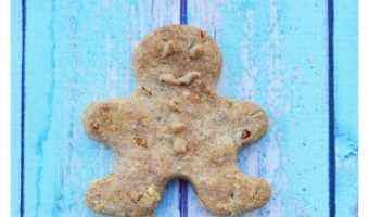 Get ready to spoil your pooch with our tasty homemade gingerbread man dog treats recipe! Makes a great Christmas gift or tree ornament too!