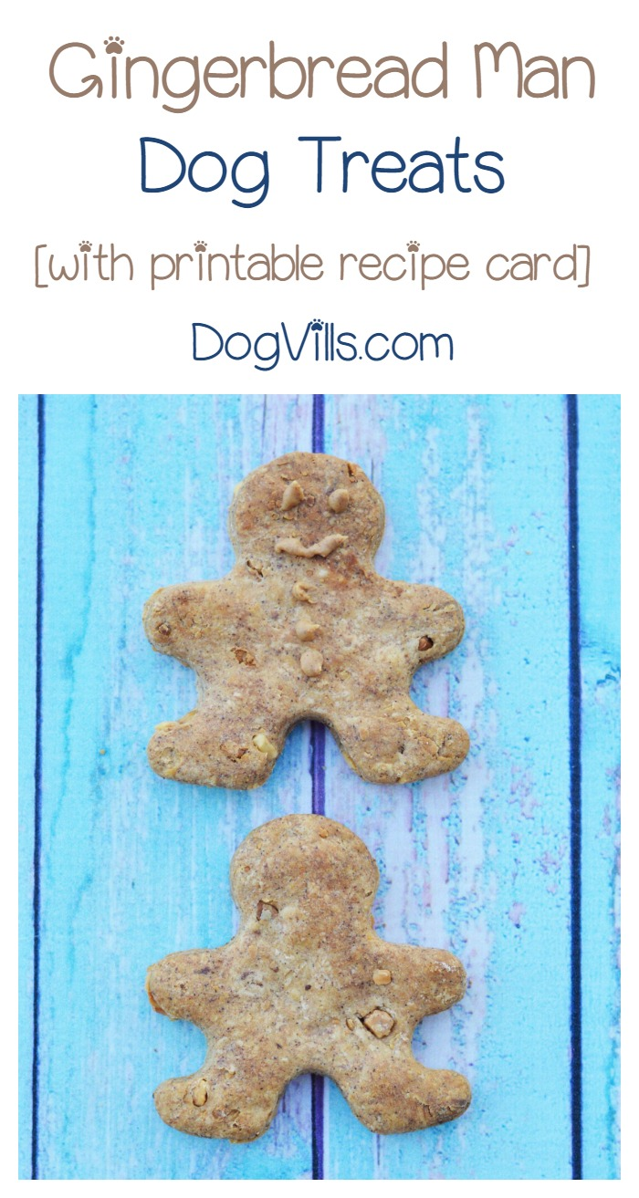 Homemade Gingerbread Man Dog Treats Recipe