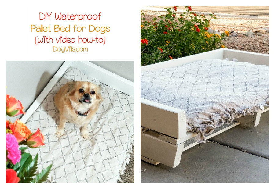 Homemade dog bed project diy waterproof pallet bed for Homemade beds for dogs
