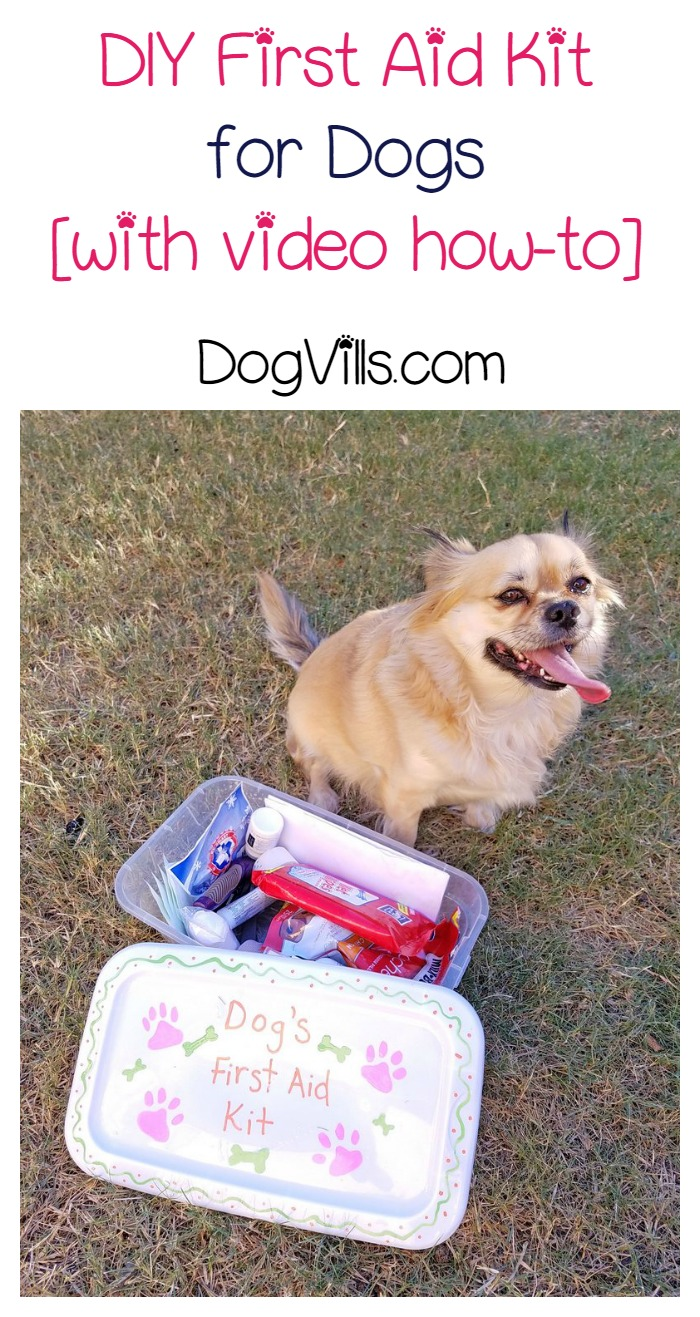 How to Make a DIY First Aid Kit For Your Dog [with video]