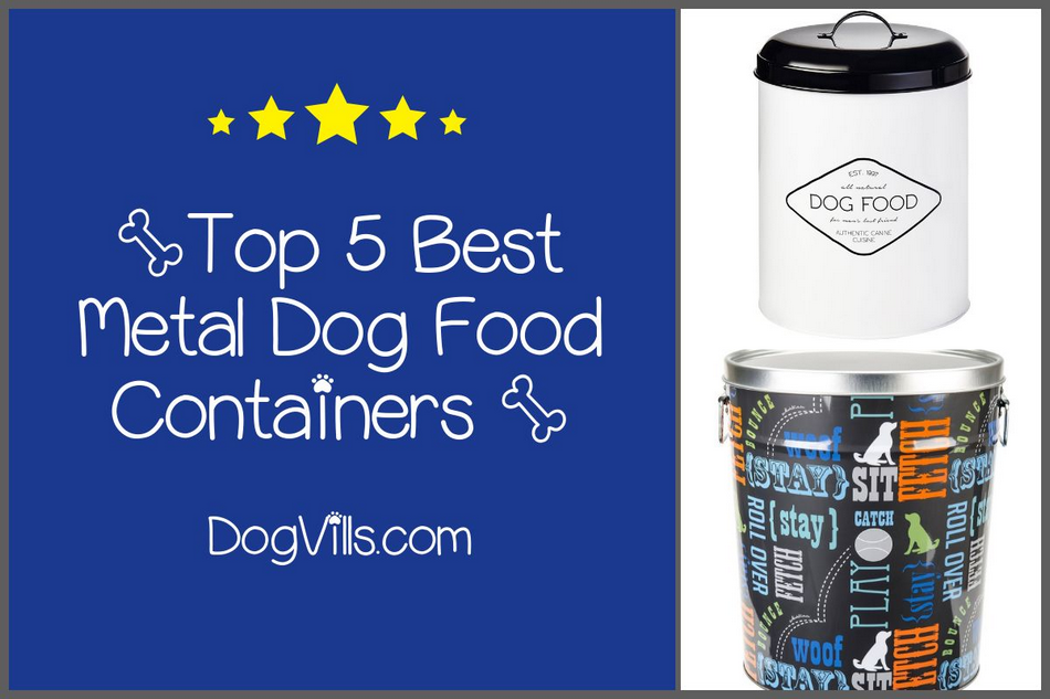 Top 5 Best Metal Dog Food Containers to Try- Dogvills