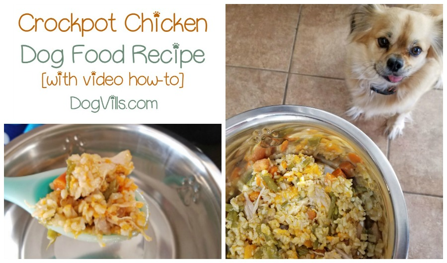 Nutritionally Complete Homemade Dog Food Recipe