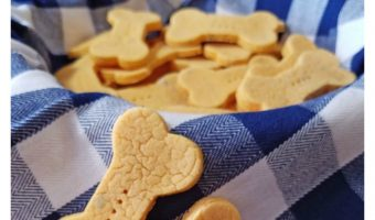 Low Fat Veggie Treats Recipe for Dogs [with video tutorial]