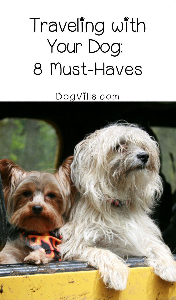 Traveling with your dog- 8 Must-Haves