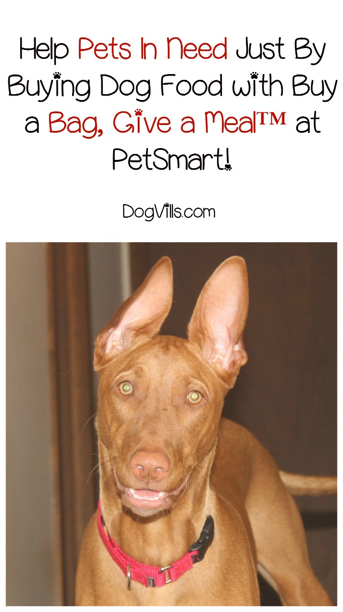 Give Back to Pets in Need with Buy a Bag, Give a Meal™ from PetSmart