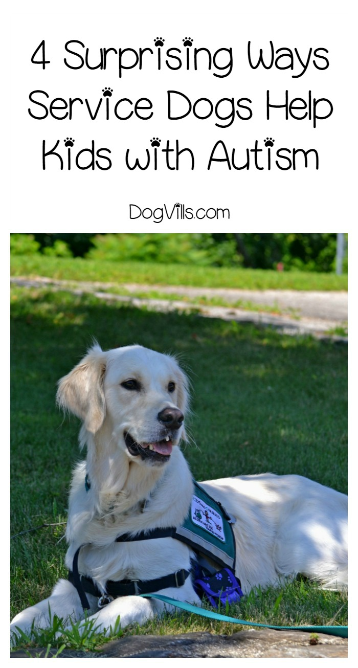 4 Things Service Dogs Can Do For Kids with Autism That You Never Thought Possible