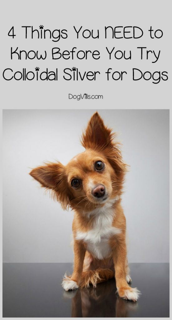 Colloidal Silver For Dogs A Dangerous Fad Dogvills
