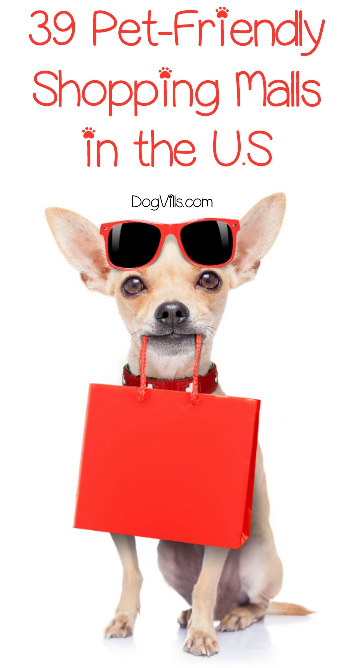 39 Pet-Friendly Shopping Malls in the U.S