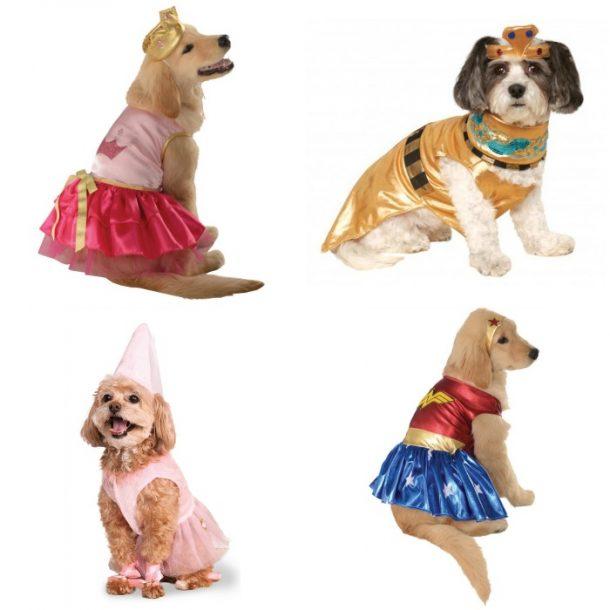 female dog halloween costumes 610x610jpg